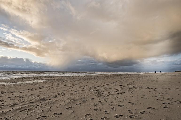 Texel 1