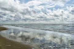 Texel 2